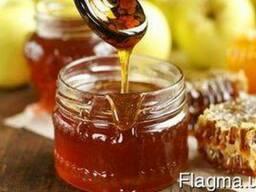 Продам мед 2017 г. гречишный разнотравье, цена договорная