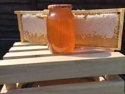 Продам мед с липы