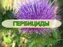 Продам мелким и крупным оптом Средства защиты растений.