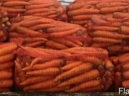 Продам морковь для бюджетных организаций