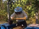 Продам мёд Харьков - фото 7
