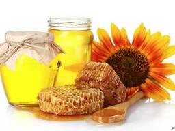 Продам мёд в Житомире