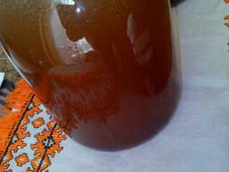 Продам натуральный горный Карпатский мёд