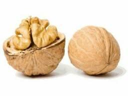 Продам орех бойный