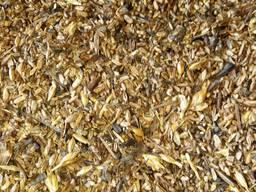 Продам отходы пшеницы