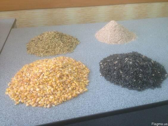 Продам отруби пшеничные,ячмень,кукурузу,подсолнечник