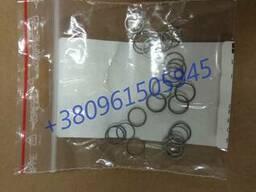 Продам поршневые кольца гидромотора Horsch 00380950