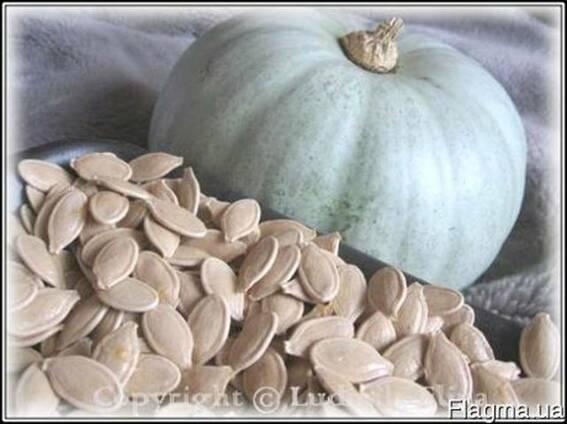 Продам посевной материал семена тыквы