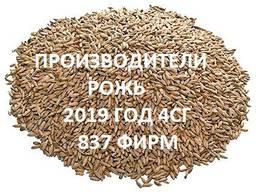 Продам Рожь озимая. Справочник 2019 4СГ (837 фирм)