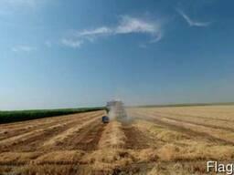 Продам сельхоз предприятие в Херсонской обл 1100 га