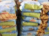 Продам семена кормовых культур - фото 3