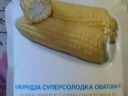 Продам семена сахарной кукурузы Оватонна F1 SN2 -5000шт