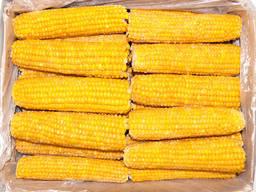 Суперсолодка кукурудзазаморожена
