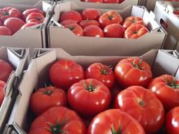 Продам тепличные помидоры и огурцы от поставщика.