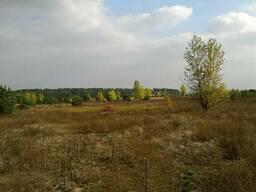 Продам участок 12 соток, с. Синяк, Вышгородский р-н.