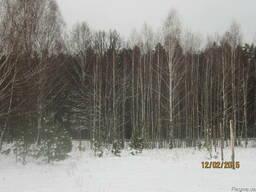 Продам участок около леса