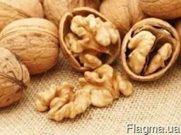 Продам волоський ( грецький) горіх оптом экспорт. Walnut