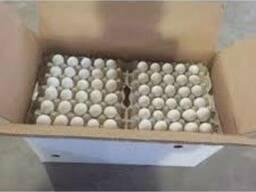 Продам яйцо куриное столовое , отборное, С-1, коричневое и б