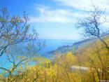 Продам земельный участок 12 сот Малый Маяк Алушта АР Крым - фото 1