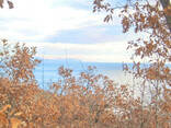 Продам земельный участок 12 сот Малый Маяк Алушта АР Крым - фото 3