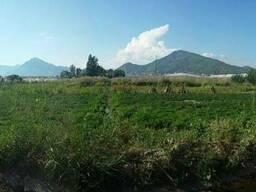 Продам земельный участок в Турции, Алания. 100 м до моря