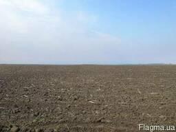 Продам землі с/г призначення від 3000 га