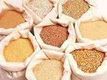 Продам зерно на экспорт - фото 2