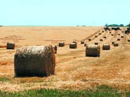 Продаём солому урожай 2020
