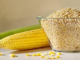 Продаём зародыш кукурузный