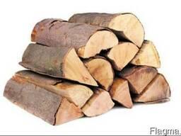 Продаю дрова из дуба, ясеня, березы, Киев