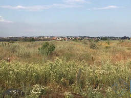 Продаются земельные участки в СК Зеленый гай