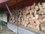 Продажа 1 метровых отличного качества буковых дров