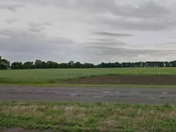 Продажа земельного массива, вдоль трассы Черкассы-Смела торг