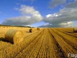 Продажа земельных участков по всей територии Украины!