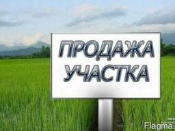 Продажа земли ОСГ в собственности с. Бышев