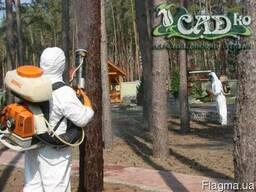 Профессиональная защита растений - фото 2
