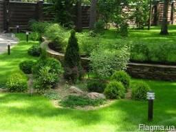 Заказать и купить рулонный газон высокого качества, с доста
