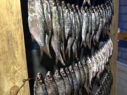 Производитель. Рыба вяленая/сушеная оптом плотва