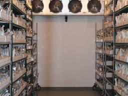 Промислове холодильне обладнання для насіння, камери зберігання