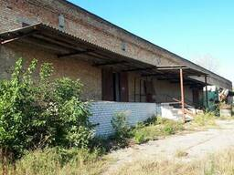 Пропонується в оренду склад-магазин, в м. Чигирин.