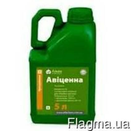 Протравитель Авиценна СЕ, 5л, (Alfa smart agro)