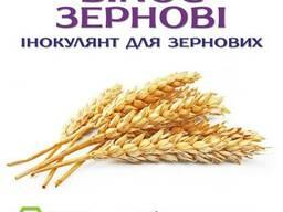 Протруйник для зерна - BINOC Зернові ENZIM Agro