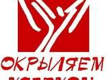 Проведение фокус-групповых дискуссий в любых городах Крыма - фото 1