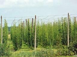 Проволока для подвязки виноградников 2, 0-4, 0-6, 0мм оцинковка