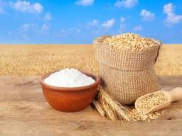 Пшеница / мука пшеничная большие объемы