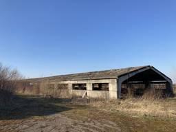 Ферма Пташники корівники