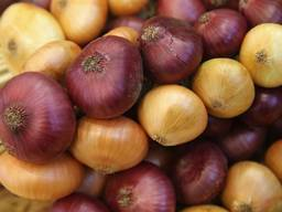 Quality Onion