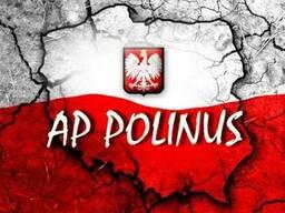 "Рабочая виза D05 Польша пакет ""Podstawowy"""