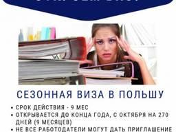 Рабочая виза в Чехию, Польшу. Страховка