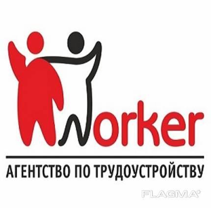 Рабочая виза в Польшу. Трудоустройство.